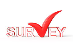 Survey with Check Mark Royalty Free Stock Image