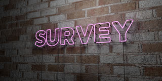 SURVEY - Glowing Neon Sign on stonework wall - 3D rendered royalty free stock illustration Royalty Free Stock Images