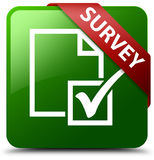 Survey green square button Royalty Free Stock Photography