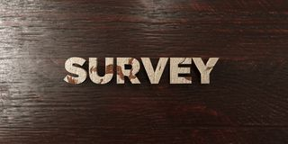 Survey - grungy wooden headline on Maple  - 3D rendered royalty free stock image Stock Photos