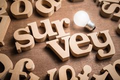 Survey Idea. SURVEY wood word in scattered wood letters with glowing light bulb stock photos