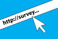 Survey illustration stock illustration