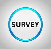 Survey Round Blue Push Button vector illustration
