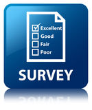 Survey (questionnaire icon) blue square button Royalty Free Stock Image