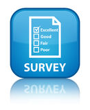 Survey (questionnaire icon) special cyan blue square button Royalty Free Stock Image