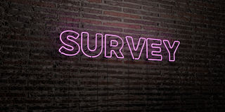 SURVEY -Realistic Neon Sign on Brick Wall background - 3D rendered royalty free stock image Royalty Free Stock Photo