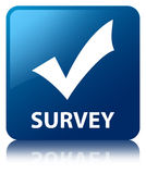 Survey (validate icon) blue square button Royalty Free Stock Image