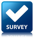 Survey (validate icon) blue square button Royalty Free Stock Photo