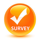 Survey (validate icon) glassy orange round button Stock Images