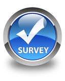 Survey (validate icon) glossy blue round button Royalty Free Stock Photography