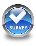 Survey (validate icon) glossy blue round button Royalty Free Stock Photos