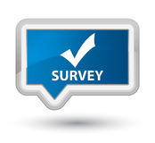 Survey (validate icon) prime blue banner button Stock Images