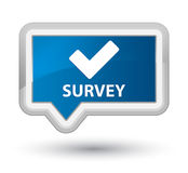 Survey (validate icon) prime blue banner button Stock Photos
