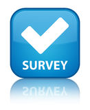 Survey (validate icon) special cyan blue square button Stock Photography