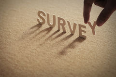 SURVEY wood word on compressed board Royalty Free Stock Images