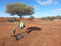 Surveyors GPS drink bottle and Jacket in a tree outback Australia Stock Image
