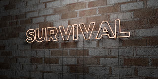 SURVIVAL - Glowing Neon Sign on stonework wall - 3D rendered royalty free stock illustration. Can be used for online banner ads and direct mailers royalty free illustration