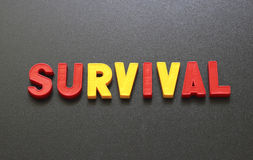 Survival Royalty Free Stock Images