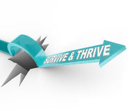 Survive and Thrive - Arrow Jumps Over Hole Royalty Free Stock Photography