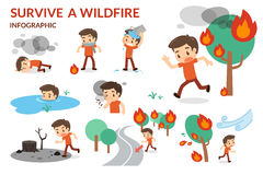 Survive a Wildfire. Forest fire. Danger of wildfire. Royalty Free Stock Image
