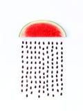 Survivez au concept, forme de pastèque de saison des pluies une partie d'un wea photographie stock libre de droits