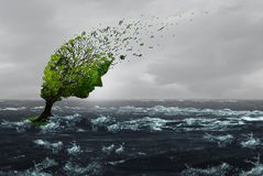 Surviving A Storm. Concept as a battered stressed tree blown by violent winds in flood waters as an anxiety or abuse metaphor to withstand psychological or Royalty Free Stock Photography