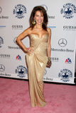 Susan Lucci Stock Photo