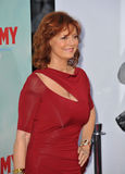Susan Sarandon Photo libre de droits