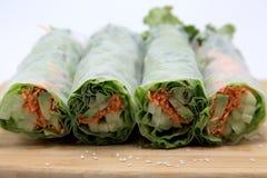 Vegetable Rolls Platter. Asian vegetable  rolls on a platter Stock Images