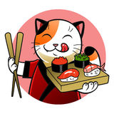 Sushi chief cat Royalty Free Stock Images