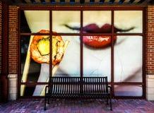 Sushi chiunque? Fotografia Stock Libera da Diritti