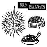 Sushi d'oursin de fruits de mer, de caviar et d'oursin illustration libre de droits