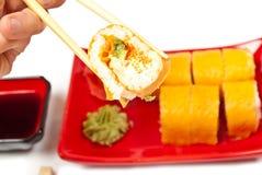 Sushi da terra arrendada da mão dos homens Imagem de Stock