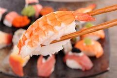 Sushi de la gamba sostenido por los palillos Foto de archivo libre de regalías