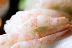 Sushi del camarón Foto de archivo libre de regalías
