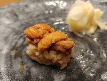 Sushi del erizo de mar con las diapositivas del jengibre fotos de archivo