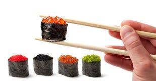 Sushi - Ebi Nigiri Stockfoto