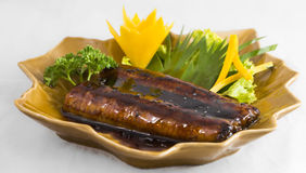 Sushi Fish Eel Royalty Free Stock Photo