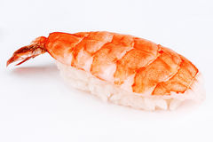 Sushi with fresh shrimp Royalty Free Stock Photography