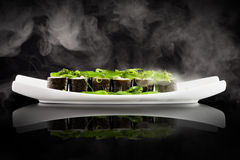 Sushi and green seaweed salad on the white plate Stock Image