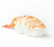 Sushi Nigiri Imagem de Stock Royalty Free
