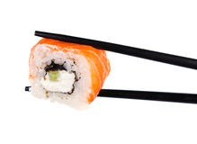 Sushi roll in chopsticks Isolated. On white Royalty Free Stock Photography