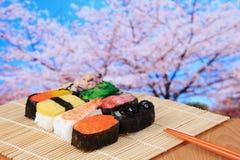 Sushi sabroso de Japón con el árbol rosado de los flores de cereza Imágenes de archivo libres de regalías