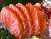 Sushi Salmon on ice in the plate. stock images