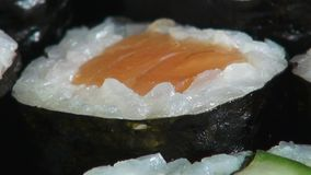 Sushi, Sashimi, Japanese Foods, Cuisine, Gourmet stock video footage