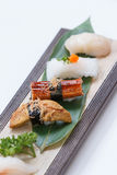 Sushi Set : Grilled Foie Gras, Grilled Unagi Japanese Freshwater Eel, Squid and Hotate Scallop royalty free stock image