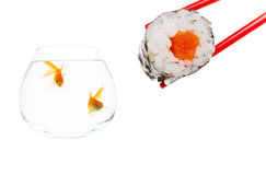 Sushi surprise Royalty Free Stock Images