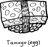 Sushi Tamago. Sketch illustration. Sushi with rice and egg. Japanese seafood. Vector illustration.  stock illustration