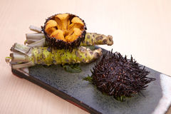 Sushi of tsuraku or sea urchin, a marine echinoderm that has a s. Pherical or flattened shell covered in mobile spines deliciously Royalty Free Stock Photography