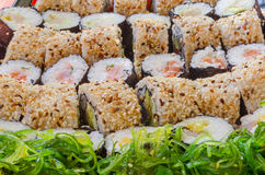 A sushi variety with seaweed salad. A wide selection of different sushi laid out in rows with a side of seaweed salad Royalty Free Stock Photography